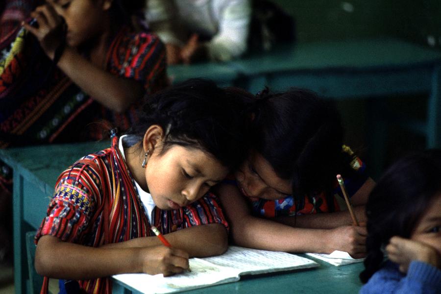 GEM/UNESCO promove consultas virtuais sobre educação inclusiva na América Latina e no Caribe